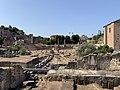 Forum Paix - Rome (IT62) - 2021-08-25 - 2.jpg