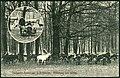 Franz Scherrer, AK Tiergarten-Restaurant J. Schwarze. Fütterung des Wildes. Bildseite mit Damwild, dem Förster von Hannover und Kind.jpg