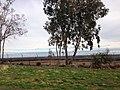 Fresno, CA, USA - panoramio (53).jpg
