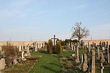 Háj u Loučné – Wikipedia