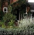 Front garden - Flickr - peganum (8).jpg
