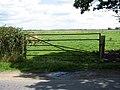Gate into marsh pasture - geograph.org.uk - 1425065.jpg