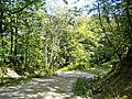 Gavigno-paesaggio 08.jpg
