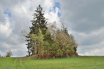 Gedächtniskapelle Waisenegg 03.jpg