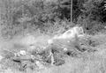Gefechtsgruppe Grenadiere bei Uebung mit Handgranatenwerfen - CH-BAR - 3238665.tif