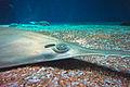 Genoa - aquarium.jpg