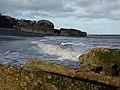 Godwin Battery, Kilnsea - geograph.org.uk - 304852.jpg