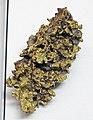 Gold mass with quartz (California, USA) 1 (16847476160).jpg