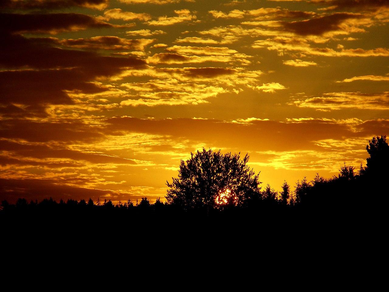 Filegood Morning Guys Flickr Stiller Beobachterjpg Wikimedia