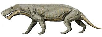 Gorgonopsia - Gorgonops