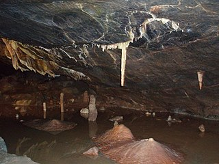 Goughs Cave Cave and archaeological site in the United Kingdom