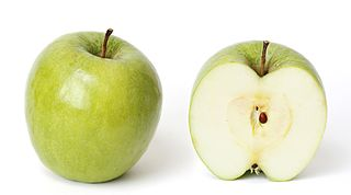 Granny Smith apple cultivar that produces cooking apples which are also sour eating apples