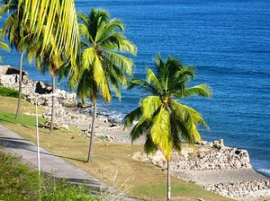Great Hurricane of 1780 - Warehouses on the beach of St. Eustatius were damaged by the hurricane.