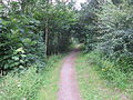 Green space near Pool Lane, Ince, Cheshire (9).JPG