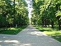 Großer Garten39.jpg