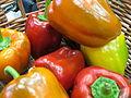 HAR HANEGEV AGRICULTURE-PNINA LIVNY (6).JPG