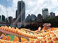 HK 銅鑼灣 CWB 維園 Victoria Park day 中秋節 night Mid Autumn Festival big dragon in art September 2019 SSG 18.jpg