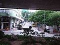 HK Bus 101 view 九龍城區 Kln City 漆咸道北 Chatham Road North 馬頭圍道 Ma Tau Wai Road August 2018 SSG 32.jpg