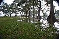 Habarana Lake 2.jpg