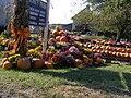 Halloween New England 3.jpg