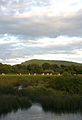 Hambledon Hill from Hammon 20070729.jpg