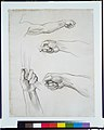 "Hands, Study for ""Apollo in His Chariot with the Hours"" MET APS3550.jpg"