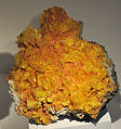 Harvard Museum of Natural History. Wulfenite. San Francisco Mine, Magdalena district, Sonora, Mexico (DerHexer) 2012-07-20 2.jpg