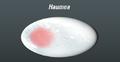 Haumea2.png