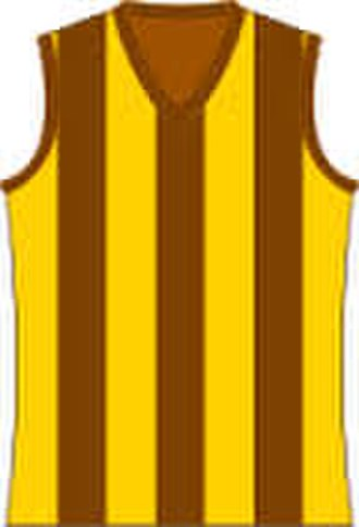 Colac & District Football League - Image: Hawthorn Hawks Jumper