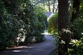 Hayes McGraw House-1.jpg