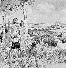 Henry Kelsey sees the buffalo on the western plains.jpg