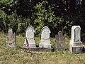 Hickman Family Plot, Bethany Cemetery, 2015-08-30, 01.jpg
