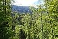 Hike to Vallée du Laudon (47935164498).jpg
