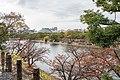 Hiroshima Castle, Hiroshima City; November 2018 (14).jpg