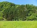 Hitokasumi, Tsuruoka, Yamagata Prefecture 999-7203, Japan - panoramio (1).jpg
