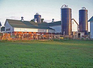 Hoards Dairyman Farm United States historic place