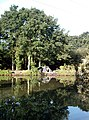 Hockley Angling Club - geograph.org.uk - 452783.jpg