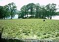 Holme Crag - geograph.org.uk - 37720.jpg