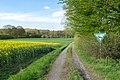 Horn-Bad Meinberg - 2015-05-04 - LIP-004 Naptetal (09).jpg