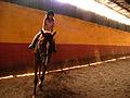 Horse-Riding-07749.jpg
