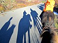 Horseback Riding (8095376993).jpg