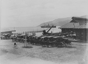 History of Cairns -  Horsedrawn cabs on Cairns wharf, c. 1912