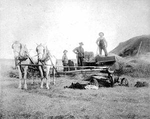 Burnsville, Minnesota - Horses baling straw circa 1900.
