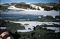 Horseshoe Island Sally Cove igneous contact.jpg