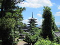 Horyu-ji National Treasure World heritage 国宝・世界遺産法隆寺120.JPG