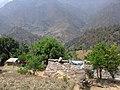 House of mahendra-gayatri awasthi - panoramio.jpg
