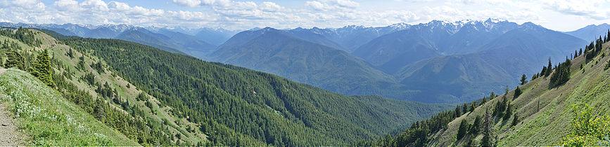 Hurricane ridge panorama 4.jpg