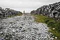 Inishmore Island 010.jpg