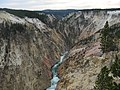 Inspiration Point, Yellowstone Canyon - panoramio.jpg