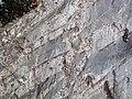Interbedded graywacke-siltstone-slate (Mud Lake sequence, Neoarchean; Bourgin Road roadcut, Virginia, Minnesota, USA) 2 (22878926504).jpg